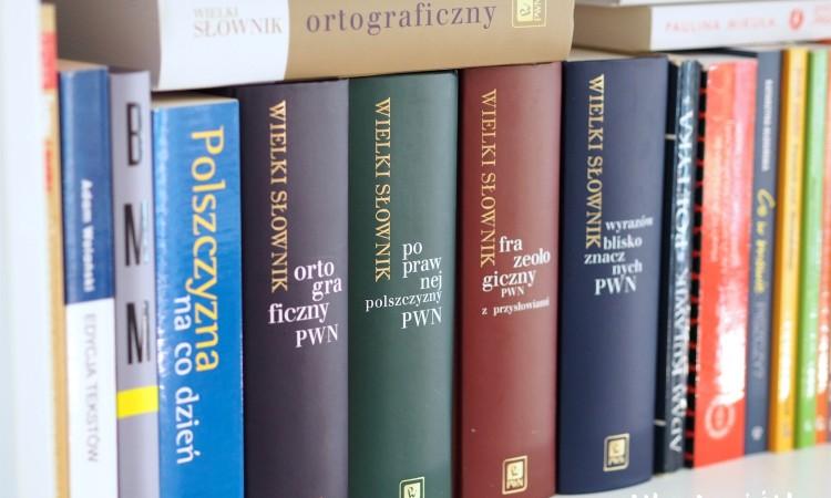 darmowe słowniki online języka polskiego